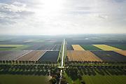 Nederland, Flevoland, Gemeente Lelystad, 23-10-2013; Kaarsrechte Vogelweg met Lepelaarstocht, zuidwestelijk van Lelystad. Rechte blokken landbouwgrond afgewisseld door weilanden. Markermeer aan de horizon.<br /> Polder in Flevoland, argicultural landscape. Square fields.<br /> luchtfoto (toeslag op standaard tarieven);<br /> aerial photo (additional fee required);<br /> copyright foto/photo Siebe Swart.
