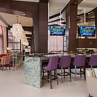 Hilton Garden Inn - Homewood Suites 05 - Midtown Atlanta, GA