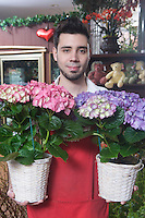 Florist stands with two hydrangea