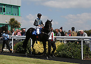 Jockey Richard Hughes on Jupiter Custos in the Parade Ring before the 2.20 race at Brighton Racecourse, Brighton & Hove, United Kingdom on 10 June 2015. Photo by Bennett Dean.