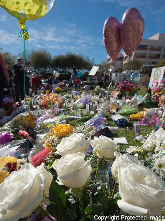 Located at the memorial in front of the University of Arizona Medical Center in Tucson, Arizona. The memorial was placed fo the victims of the recent shooting in Tucson.