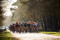Through the woods, across the klinkers  - Drentse 8, a 140km road race starting and finishing in Dwingeloo, on March 13, 2016 in Drenthe, Netherlands.