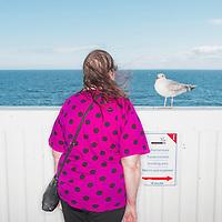 Juuso Westerlund | Portfolio