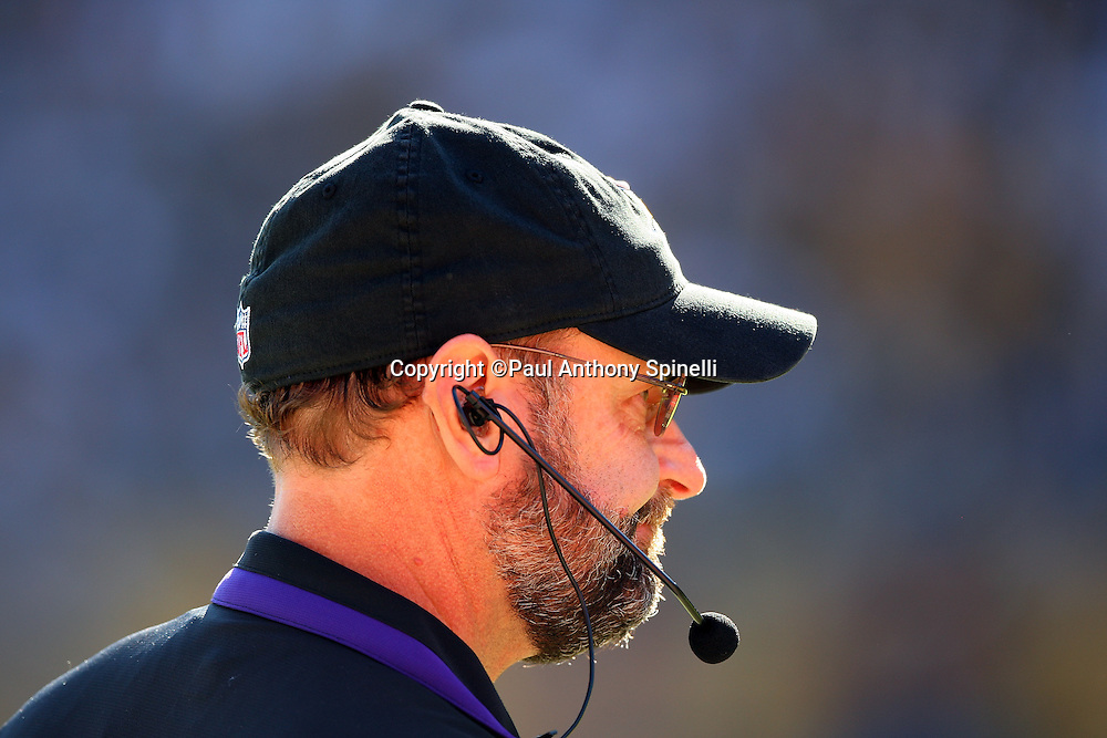 Minnesota Vikings Head Coach Brad Childress looks on during the NFL football game against the Pittsburgh Steelers, October 25, 2009 in Pittsburgh, Pennsylvania. The Steelers won the game 27-17. (©Paul Anthony Spinelli)