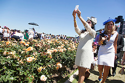 © Licensed to London News Pictures. 5/11/2013. A women takes a selfie during Melbourne Cup Day at Flemington Racecourse on November 5, 2013 in Melbourne, Australia. Photo credit : Asanka Brendon Ratnayake/LNP