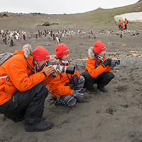 A man photographs gentoo penguins with his two young daughters on Barrientos Island.