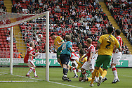 London - Sunday, May 3rd, 2009: Alan Lee of Norwich City scores his side's first goal during the Coca Cola Championship match at The Valley, London. (Pic by Mark Chapman/Focus Images)