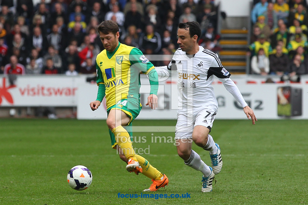 Wes Hoolahan of Norwich and Leon Britton of Swansea in action during the Barclays Premier League match at the Liberty Stadium, Swansea<br /> Picture by Paul Chesterton/Focus Images Ltd +44 7904 640267<br /> 29/03/2014