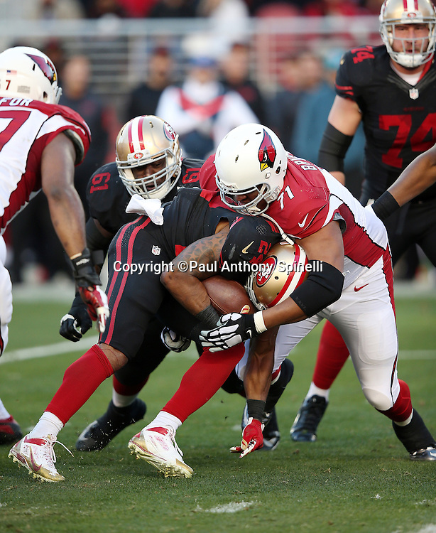 San Francisco 49ers running back Shaun Draughn (24) gets tackled by Arizona Cardinals defensive tackle Red Bryant (71) during the 2015 week 12 regular season NFL football game against the Arizona Cardinals on Sunday, Nov. 29, 2015 in Santa Clara, Calif. The Cardinals won the game 19-13. (©Paul Anthony Spinelli)