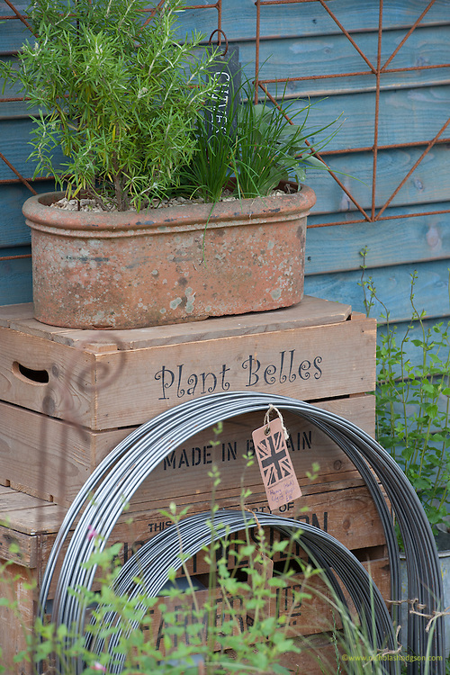 Plant Belles products