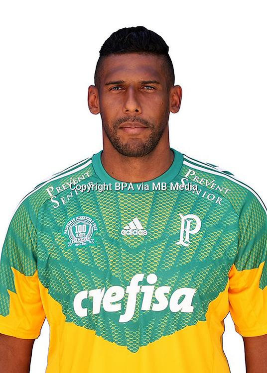 Brazilian Football League Serie A / <br /> ( Sociedade Esportiva Palmeiras ) - <br /> Mario Lucio Duarte Costa
