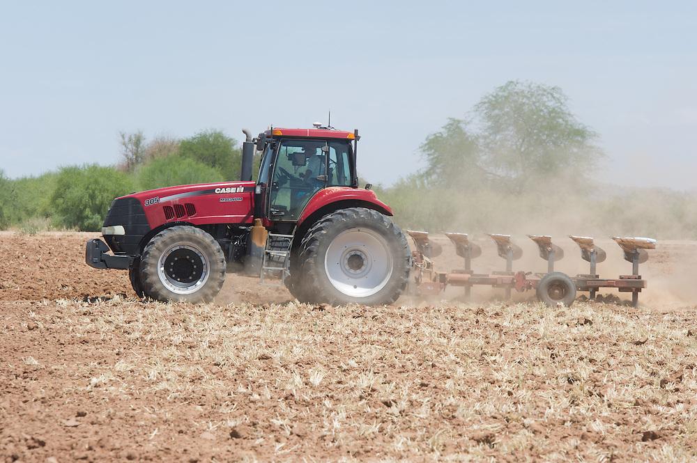 Tractor plowing in the field , Maricopa  Arizona