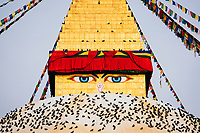The ever-seeing eyes of Boudhanath Temple in Kathmandu.