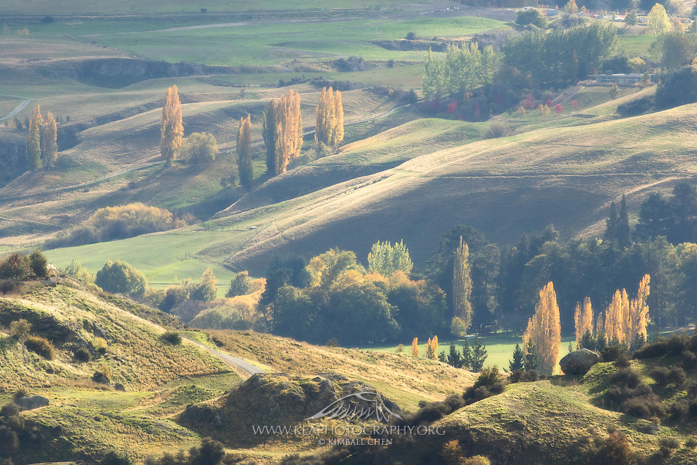 Soft light graces the countryside hills of Central Otago in autumn, New Zealand.