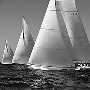 Columbia, 12 Meter Class, sailing in the Opera House Cup Regatta.