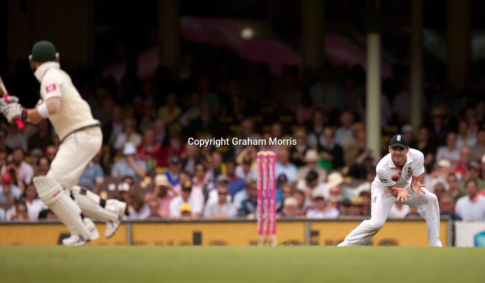 James Anderson catches Michael Clarke during the fifth and final Ashes test match between Australia and England at the SCG in Sydney, Australia. Photo: Graham Morris (Tel: +44(0)20 8969 4192 Email: sales@cricketpix.com) 03/01/11