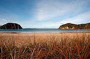 the calm water at matapouri makes it a great swimming beach and the surrounding new zealand landscape of golden sand with wild grasses complete this beach scene, northland, new zealand