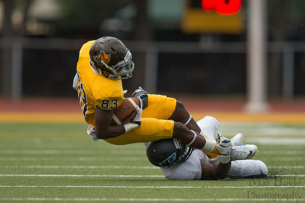 Rowan University Sophomore WR Todd Guillaume (83) -  Rowan University Football vs Wesley College at Richard Wacker Stadium in Glassboro, NJ on Saturday October 19, 2013. (photo / Mat Boyle)