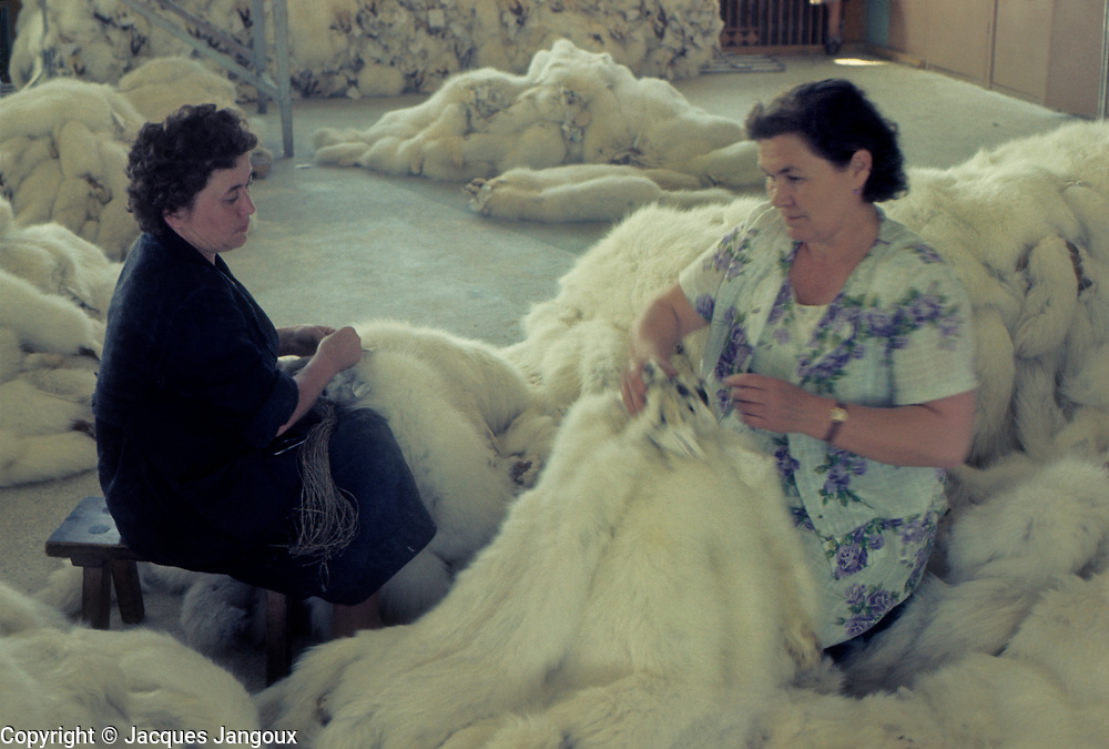 USSR (Union of Soviet Socialist Republics) 1968. Siberia. Irkutsk: women working in fur storage house.
