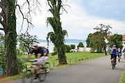 Radle auf dem Bodensee-Radweg bei Nußdorf/Untermaurach, Bodensee, Überlinger See, Baden-Württemberg, Deutschland