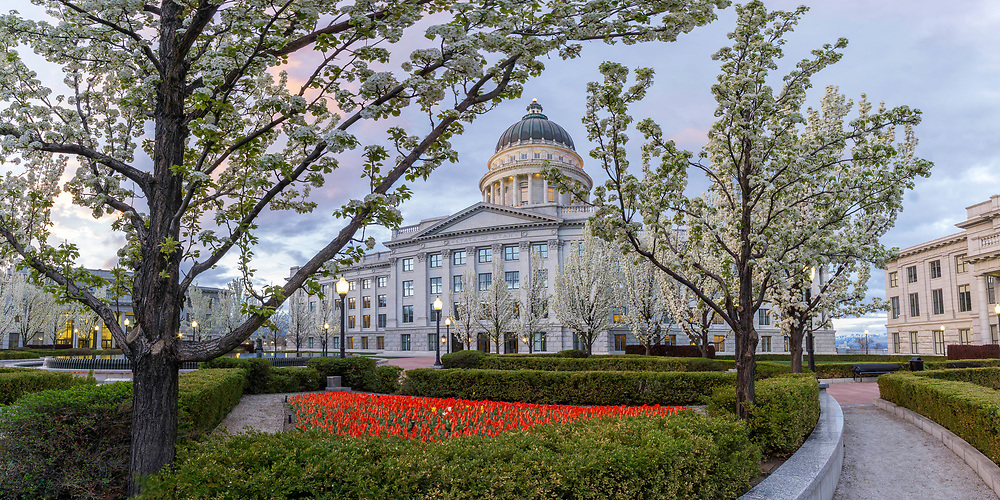 Sunrise in the gardens of the Utah State Capitol Building as the flowers and trees bloom with the beginnings of Spring.