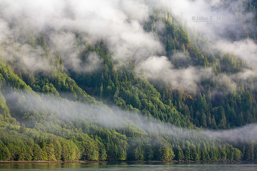 Coastal scene in the Great Bear Rainforest, British Columbia, Canada