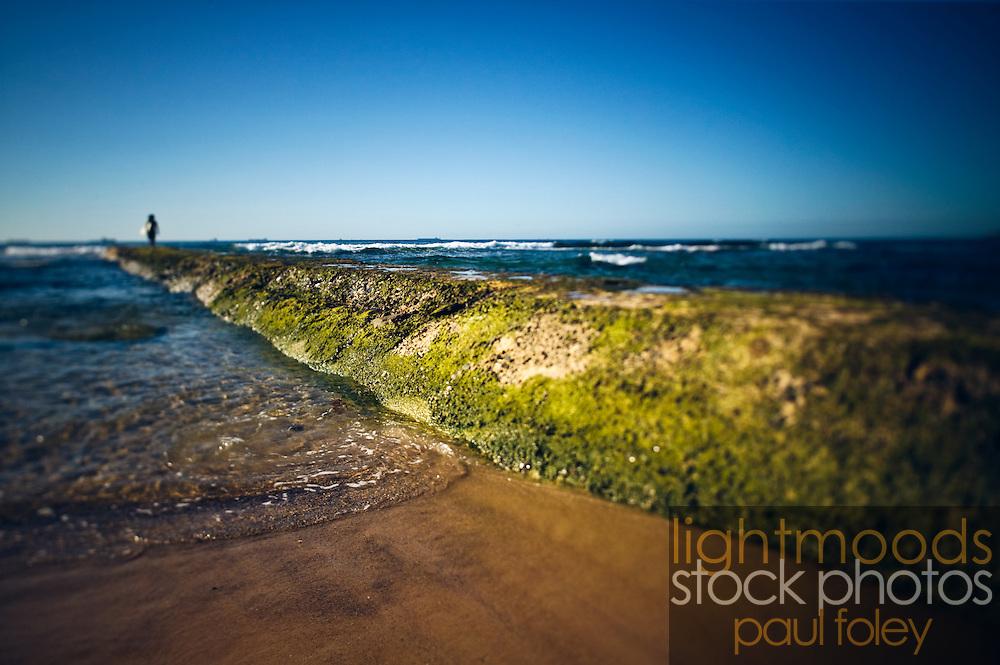 Surfer, waiting at end of rock wall, Bar Beach, Newcastle, NSW, Australia