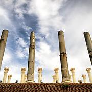 ROME, Italy - Romain ruins on the Foro Romano