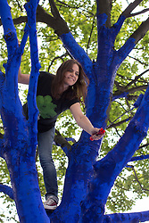 © licensed to London News Pictures. London, UK 25/06/2013. Sharon Johnson, CEO of Trees for Cities charity, painting a tree to create 'The Blue Trees' environmental art installation at Festival Gardens, next to St Paul's Cathedral as part of the annual City of London Festival. Trees in Festival Gardens being coloured 'blue' using a tree safe colourant.  By colouring the trees blue, Trees for Cities want people to stop and 'notice' the trees, which are so often taken for granted. The installation will raise awareness of the significant decline of our city trees over the last decade, and the threats they face from climate change, pests and diseases. Photo credit: Tolga Akmen/LNP