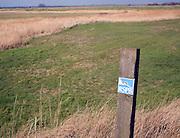 RSPB nature reserve Boyton Marshes Suffolk