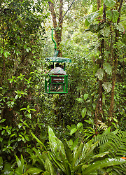 Limon Province:  Experiences at the Rainforest Aerial Tram operation include walking swinging bridges, naturalist tours through native rainforest, a tram ride through both the understory and canopy, and viewing numerous forms of wildlife and flora.