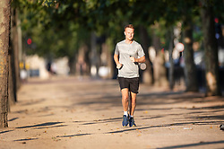 © Licensed to London News Pictures. 25/07/2019. London, UK. A jogger runs on The Mall in early morning sunshine and heat in St James's Park in central London Today is expected to be another hot day with record breaking temperatures in parts of the UK  Photo credit: Peter Macdiarmid/LNP