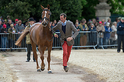 Todd Mark, (NZL), Oloa<br /> First Horse Inspection - Mitsubishi Motors Badminton Horse Trials <br /> Badminton 2015