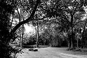 Lunuganga, Sri Lanka.<br /> Architect Geoffrey Bawa