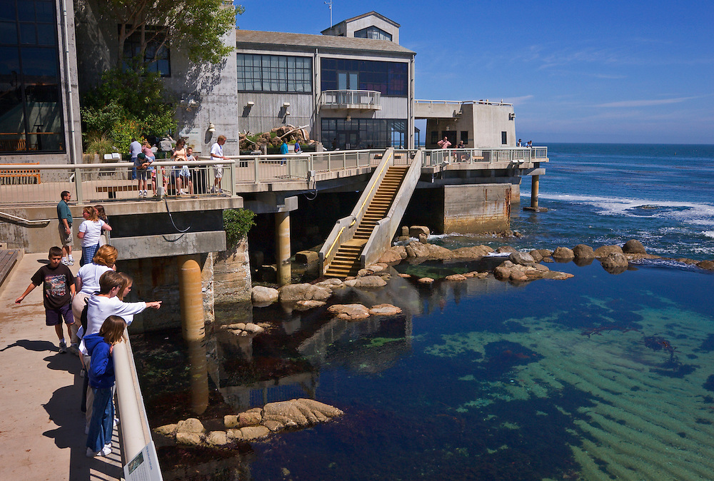 Monterey Bay Aquarium: exterior of buildings and visitors viewing tidepool; Monterey, California.