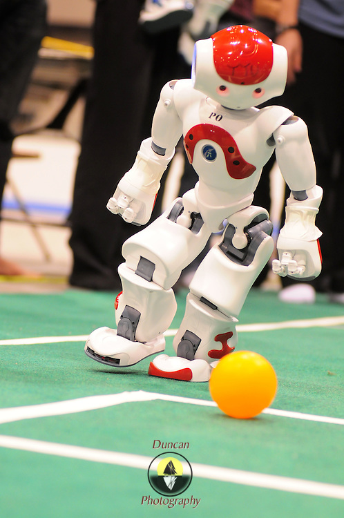 """May 2, 2009 -- BRUNSWICK, Maine.  A Nao humanoid robot looks upfield after kicking the ball as part of the 2009 RoboCup U.S. Open held this weekend at Bowdoin College. The competitors were tasked with creating software for two-legged robots which could independently play soccer with each other. """"Once we put them on the field, they are completely autonomous,""""  said Bowdoin Professor of Computer Science and """"Northern Bites"""" team advisor, Eric Chown said. """"I'm extremely proud of every one on this team. They are competing against teams with students from multiple institutes and graduate students as well. They are a talented and hard-working group!"""" Northern Bites finished fourth out of four teams participating due to injuries to the robots in early play. Photo by Roger S. Duncan."""