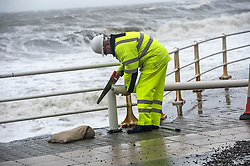 © London News Pictures. 08/02/2016. Aberystwyth, UK.  A woman repairs amage caused by the impact of Storm Imogen at Aberystwyth after the high tides have subsided. Debris from the beach and ripped up pavement slabs litter the promenade and seafront road. Photo credit: Keith Morris/LNP
