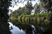 Israel, Hadera stream a seasonal watercourse nature reserve
