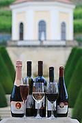 Schloss Wackerbarth, Weine, Barockgarten im Hintergrund, Radebeul, Sachsen, Deutschland.|.Wackerbarth Castle, wine bottles, baroque garden in background, Radebeul, Saxony, Germany.