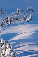 Winter on Kulshan Ridge,  Heather Meadows Recreation Area North Cascades Washington USA