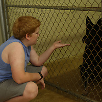 Jayden Miller, 10, let's Eddie, one of the dogs being trained Saturday at the Tupelo Small Animal Hospital's open house, smell his hand before he pets him