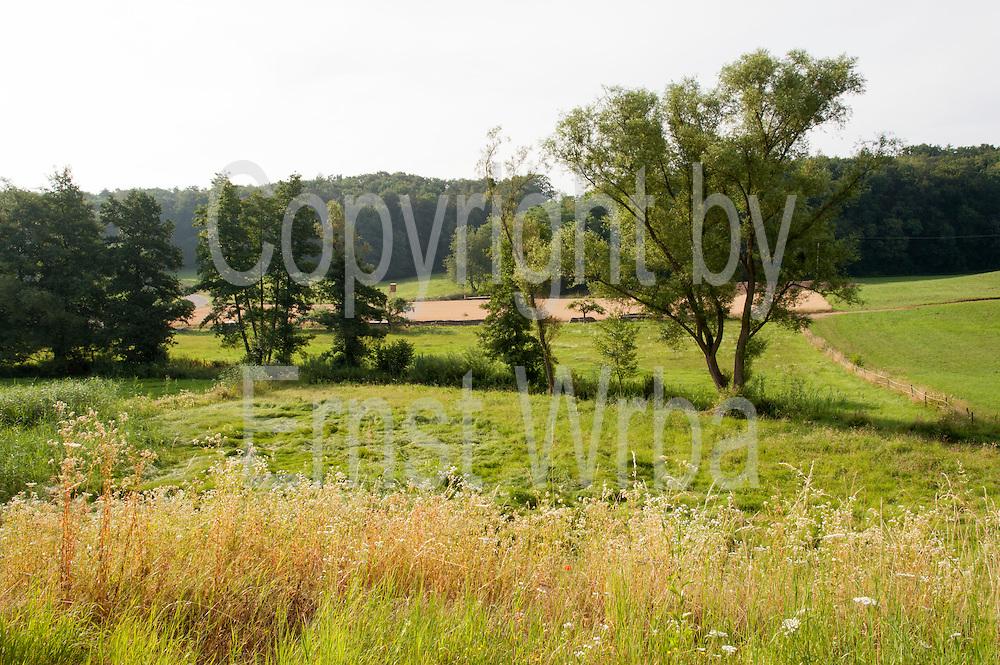 Annelsbachtal bei Höchst im Odenwald, Odenwald, Naturpark Bergstraße-Odenwald, Hessen, Deutschland   Annelsbach valley near Höchst im Odenwald, Odenwald, Hessen, Germany