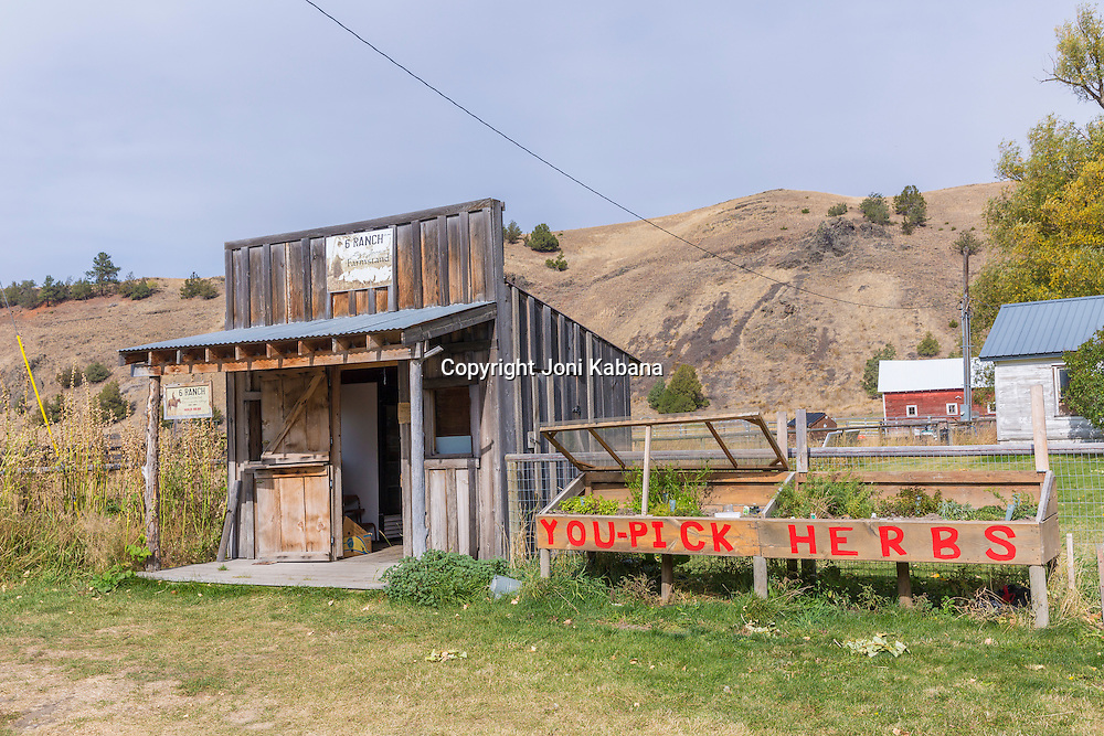 6 Ranch Farm Stand, Enterprise, Oregon