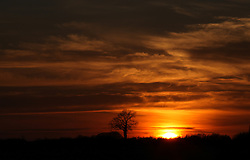 © Licensed to London News Pictures. 09/03/2014. Hampshire, UK. A bright orange sky during sunset over Hampshire this evening, 9th March 2014. The south of England has been experiencing warm, sunny weather, which is forecast to continue over the coming days. Photo credit : Rob Arnold/LNP