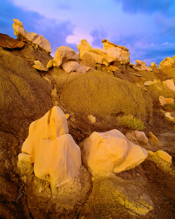 0251-1003 ~ Copyright:  George H. H. Huey ~ Shale caprock hoodoos at dusk.  The Bisti Badlands.  BLM Wilderness Area, New Mexico.