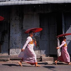 Burmese buddhist nuns make their daily rounds in Myanmar's capital city of Yangon.