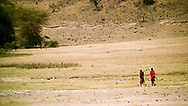Two Maasai tribesman walking in the Ngorongoro Crater, Tanzania. The Maasai are an indigenous group of semi-nomadic people located in Kenya and northern Tanzania.  They are among the most well-known of African ethnic groups internationally due to their distinctive customs, dress and residence near the many game parks in East Africa.