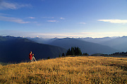 Photographer, Hurricane Ridge, Olympic Peninsula, Washington<br />