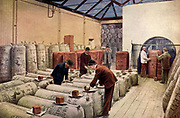 Hop-sampling warehouse, Arthur Guinness, Son & Co., Ltd., Dublin, Ireland.  Both American hops and those grown in Kent, England, were used.  From 'The Practical Grocer' (London, 1905).