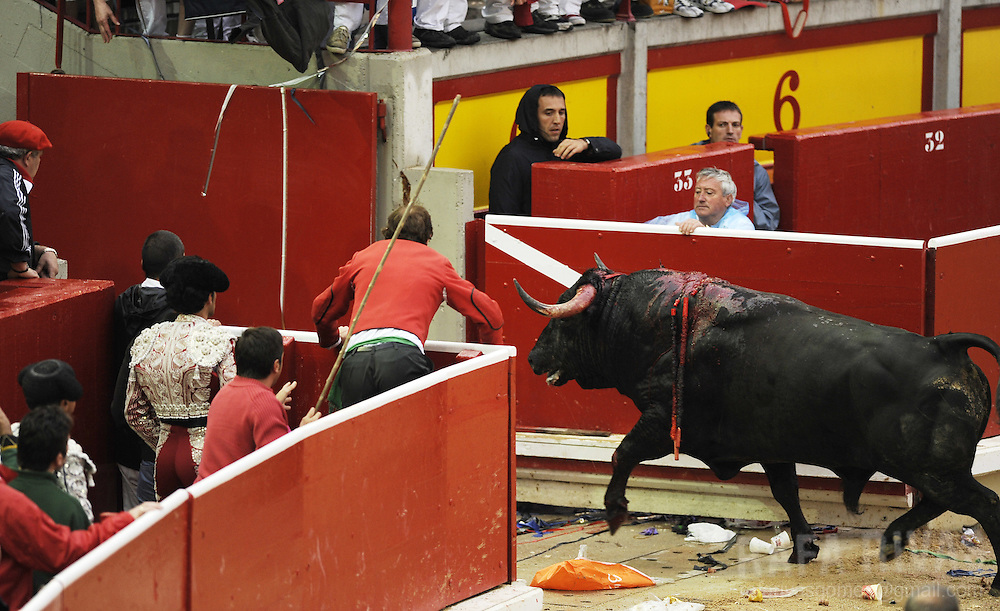 "Uceda Leal fighting bull ""Guindoso"" is removed from the bull-ring after Spanish matador Jose Miguel Perez ""Joselillo"" (2R) received three warnings for failing to kill it during the sixth corrida of the San Fermin festivities, on July 12, 2008, in Pamplona, north of Spain."